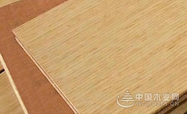 桉木多层实木板适合做家具吗?