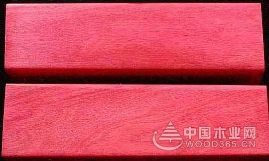 粉红色象牙木木材树种详解