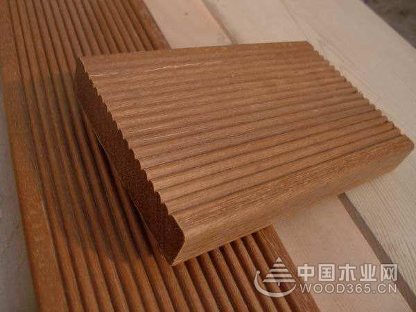 巴劳木木材生长需要的条件