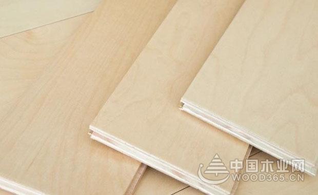 枫木板材怎么样?