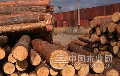 木材硬度、产地和材性大全