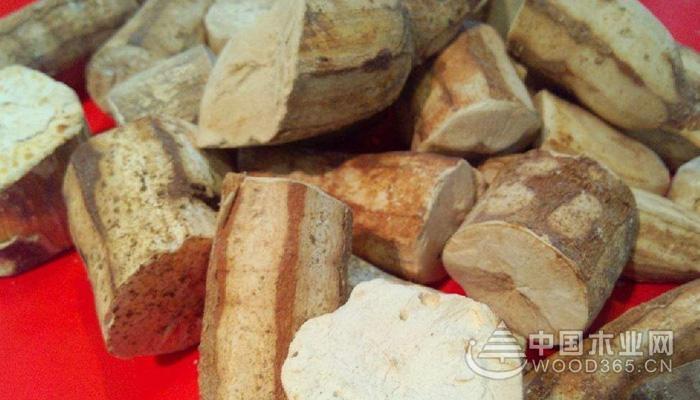 木薯是什么,木薯的功效与作用介绍|木薯图片