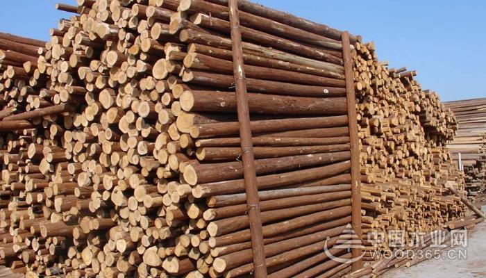 木材重量、体积以及含水量的分析