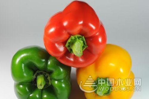 菜椒要怎么种植 六步教你轻松搞定