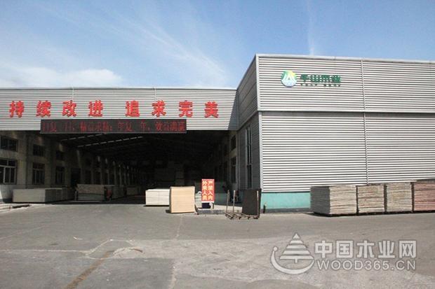 绿色环保的千山真木板是如何炼成的?——中国木业网走进千山木业