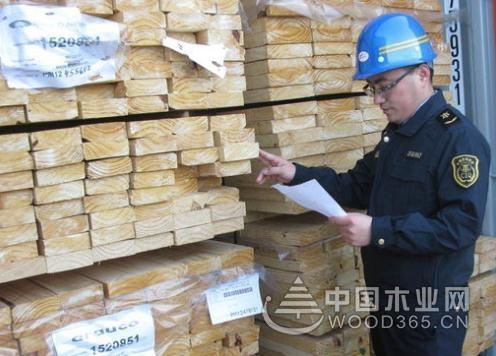 山东龙口口岸首次进口阿根廷火炬松板材,货值16.9万美元