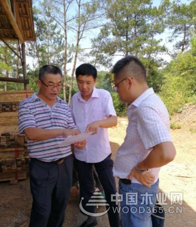 江西德安县开展木材加工企业执法检查