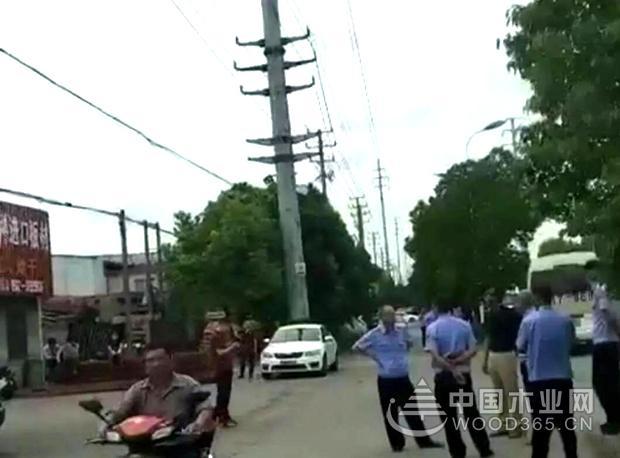 张家港对9家木材企业采取两断策施