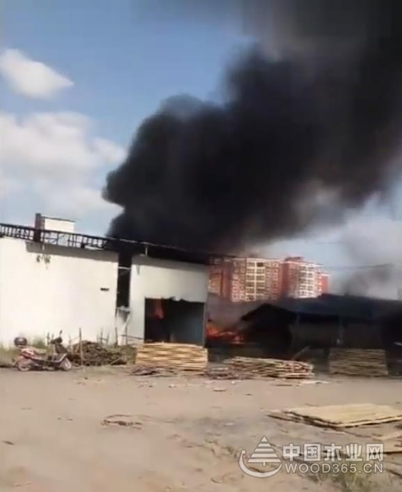 官方发布通报漯河一木材厂安全生产事故!