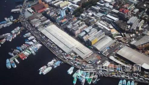 2018年巴西木材及木制品最新出口状况