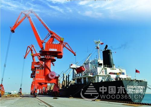 曹妃甸木材园区已完成木材进口150万立方米