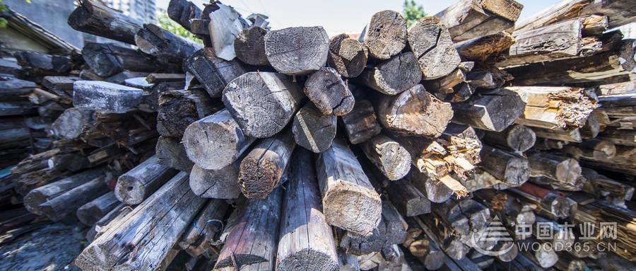 2018年12月中国木材市场价格指数(TPI)报告