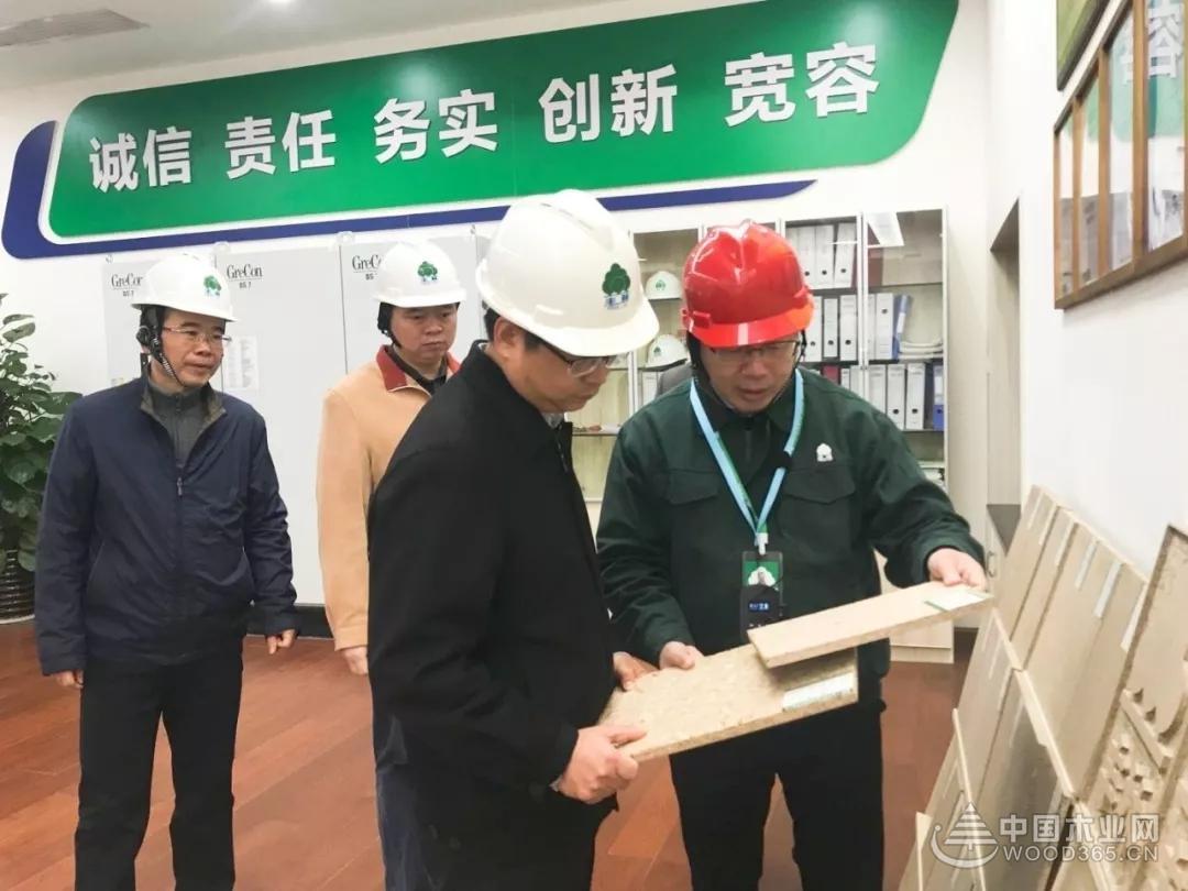 南宁市发改委丁伟主任调研丰林集团