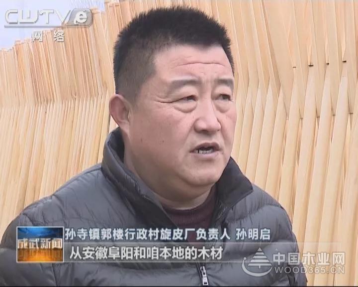 菏泽成武县拉长产业链 打造木材加工特色产业
