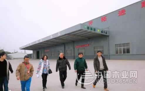 江西九江柴桑区领导到绿洲源木业调研