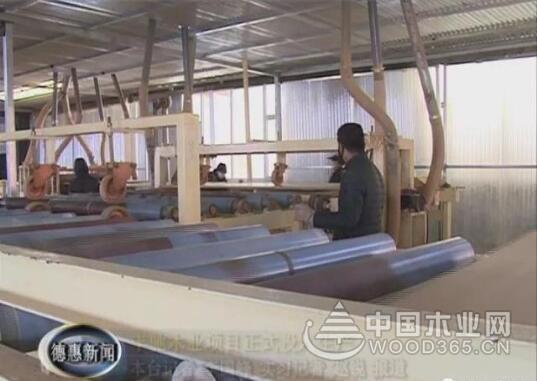 吉林丰驰木业纤维板项目正式投入生产