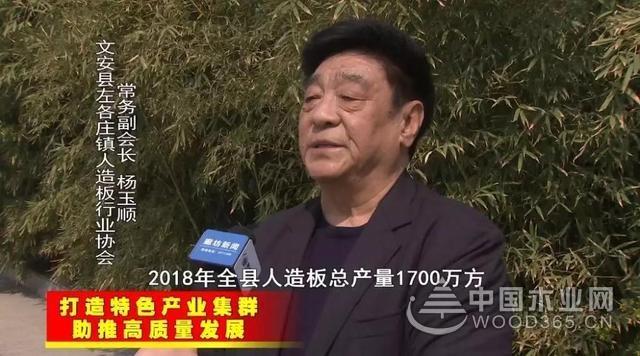 文安县加快人造板产业集群建设 打造百亿产业新城