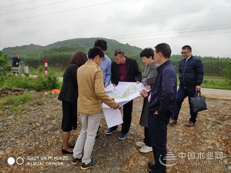 广西象州县打造一体化现代木业中心