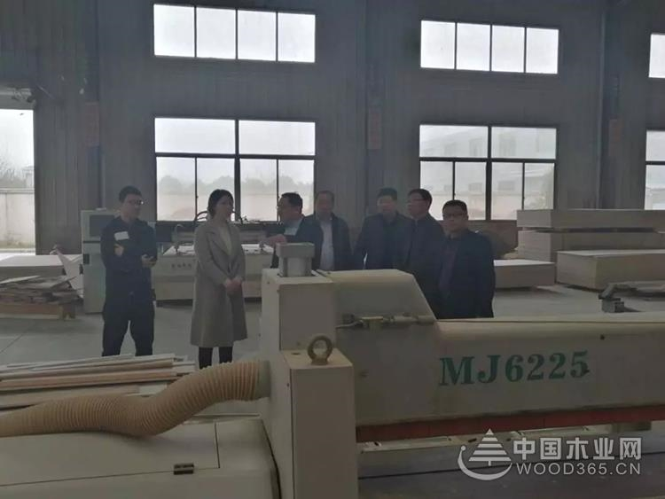 江苏泰州沈埨镇开展木制品等行业安全生产督查