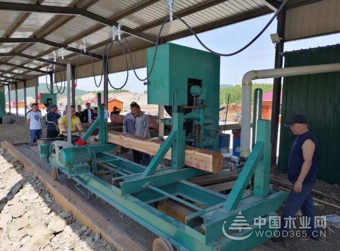 首批10家木材企业进驻中俄木材加工交易中心