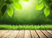 绿色地板是什么 判断绿色地板的标准是什么