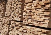 桦木板材与枫木板材的区别是什么?