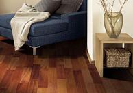 圣象胡桃木地板简介和圣象胡桃木地板优势