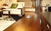 地暖用什么地板,地暖地板品牌介绍
