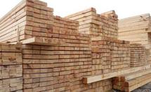 什么是松木板材?松木板材质量好不好?