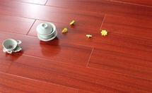 圆盘豆地板价格多少?