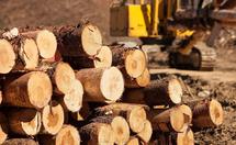 木材漂白剂的作用和用途介绍