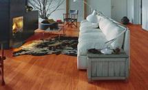 地板异响处理方法