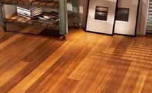 同样是环保地板,为什么弹性地板更易于打理?