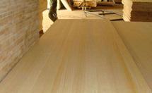 樟子松板材价格和特点