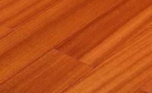 普通实木地板:纽敦豆、腺瘤豆地板名称的争议