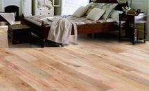 德尔地板欧洲橡木地板特点