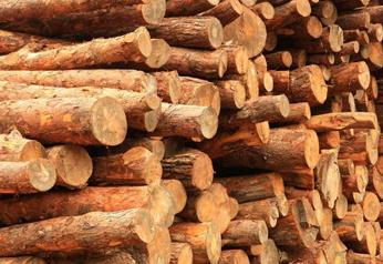 【分析】各国木材政策对我国进口木材市场的影响
