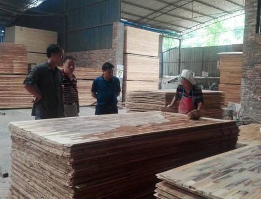剑河县林业局检查木材生产企业并为企业排忧解难