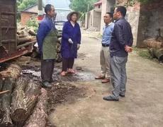 江西九江海会镇开展木材加工专项整治行动