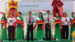 <font color=#FF0000>越南</font>中部与西源地区最大木材加工厂正式投运
