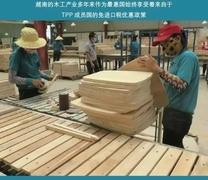 探析<font color=#FF0000>越南</font>木工产业持续升温的原因