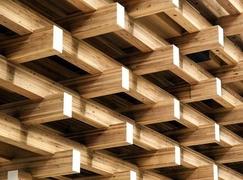 【周评】十九大如火如荼,木材价格涨价不休