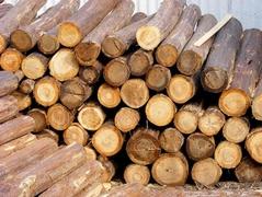 【周评】全年木材行情跌宕起伏 终以平稳落下帷幕
