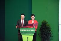 第九届中国临沂国际木业展览会