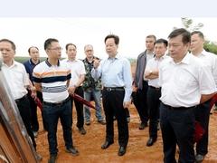 广西崇左市委书记调研中泰产业园木业加工区贮木场项目