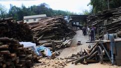 株洲市部分木材厂消防意识淡薄 工人不会用灭火器
