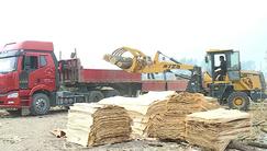 安徽蒙城立行立改 一家木材加工厂连夜整改