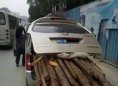 贵阳一起偷运木材案件被查获