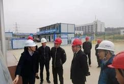 福建交通集团领导莅临莆头港口物流园区木材城指导工作