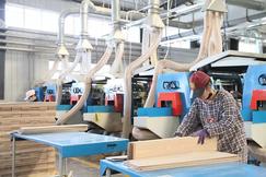 产业集聚增强|绥芬河边合区85家木业企业全部开工